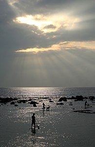 Paddling surfers under crepuscular rays