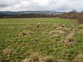 The surface of Binney Tip - geograph.org.uk - 1740079.jpg
