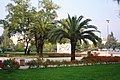 Tirana - panoramio - Colin W (2).jpg