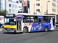 Tokachi bus O230B 0117.JPG