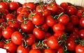 Tomatooes.jpg