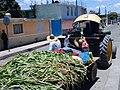 Tractor en Huamantla, Tlaxcala 02.jpg