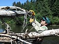 Trash cleanup in the Tongass National Forest.jpg