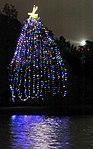 Tree Lighting Ceremony DVIDS345060.jpg