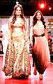 Tulip Joshi, Soniya Gohi at Inaugural ceremony of Rajasthan Fashion Week in Jaipur' (4).jpg