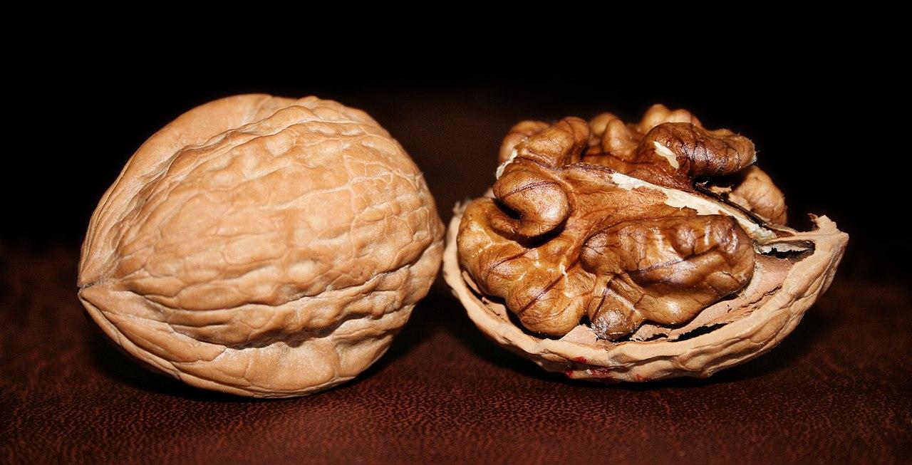 Грецкий орех для спермы