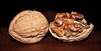 https://upload.wikimedia.org/wikipedia/commons/thumb/2/26/Two_English_Walnuts_edit.jpg/200px-Two_English_Walnuts_edit.jpg