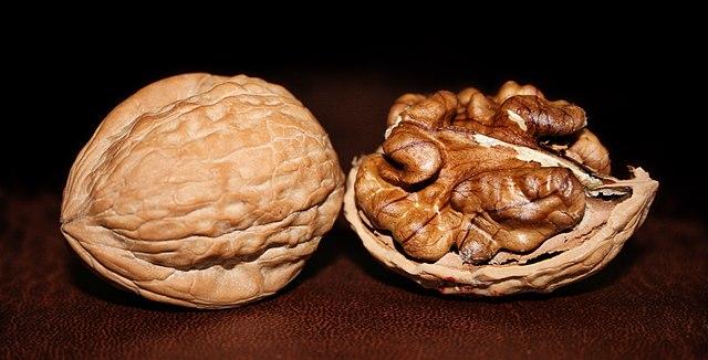 Orech a rozlusknutý orech