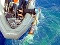 US Navy 020622-N-0000X-001 Boat crew retrieves an inert MK-46 torpedo.jpg