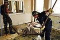 US Navy 080919-N-1468B-020 Sailors clean up damage caused by Hurricane Ike.jpg