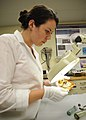 US Navy 100803-N-9671T-007 Kate Morrand, an artifact conservator at Naval History and Heritage Command, inspects a piece of pottery recovered from the wreck of the sloop-of-war USS Scorpion.jpg