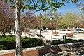VIEW , ®'s - DiDi - RM - Ð 6K - ┼ , MADRID PARQUE de PEÑUELAS JARDÍN - panoramio (109).jpg