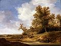 Van Moscher, Jakob - A Road near Cottages - Google Art Project.jpg
