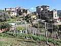 Varase Ventimiglia.jpg