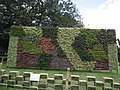 Vertical Garden from Lalbagh flower show Aug 2013 8779.JPG
