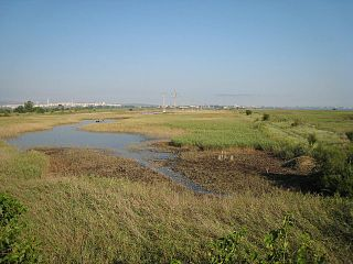 Poda Protected Area lake in Bulgaria