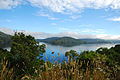 View of Grove Arm from Queen Charlotte Drive near Whenuanui Bay 20100122 2.jpg