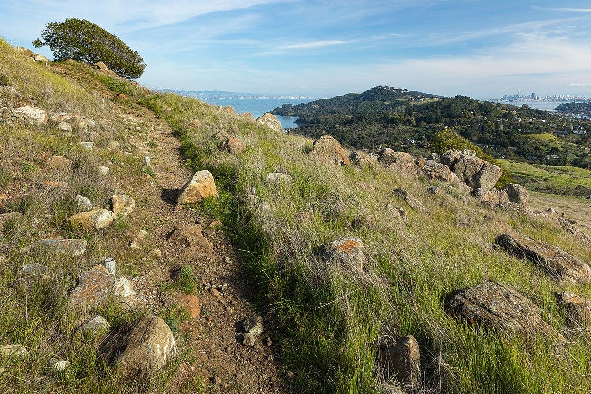 Ring Mountain Tiburon Rock With Petroglyphs Nature Tour