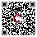 WLM-de-Qrcode with logo.png