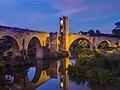 WLM14ES - Puente medieval de Besalú 5 - sergio segarra.jpg
