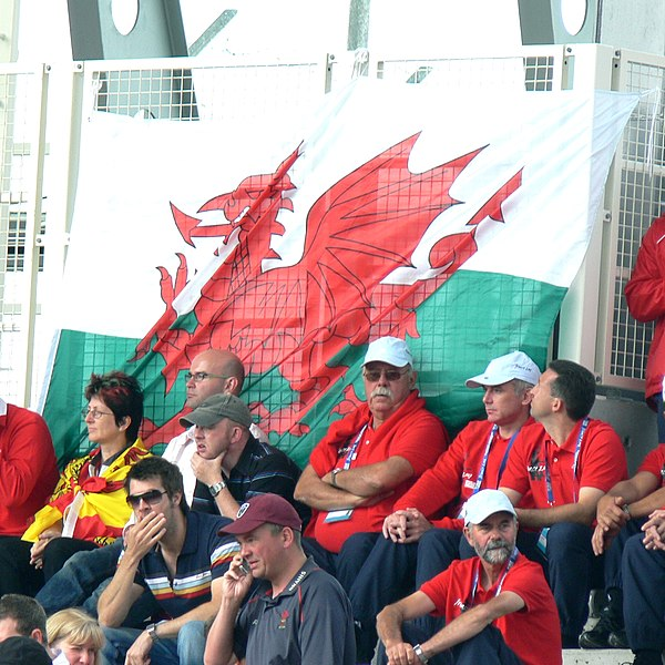 File:Wales Rugby World Cup 2007 09 09 Wales flag.jpg