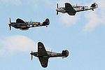 Warbirds (5102852466).jpg