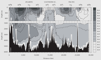 Seawater - Ocean salinity at different latitudes in the Atlantic and Pacific