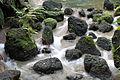 Water Flows (12758635453).jpg