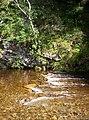 Water of Tarf - geograph.org.uk - 54999.jpg