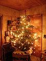 Weihnachtsbaum 2009 03 (RaBoe).jpg