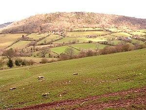 Wenallt Hill - Image: Wenallt geograph.org.uk 148605