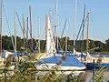 Werder - Yachthafen - geo.hlipp.de - 28525.jpg