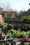 foto van Baljuwhuis, westelijke tuinmuur