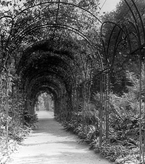 George Holford - Image: Westonbirt Pergola 1905