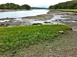 Weymouth Back River from shore Great Esker Park (esker on right) end July 2012.jpg