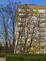 Widzew, Łódź, Poland - panoramio (19).jpg