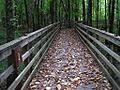 William B Clark Conservation Area Rossville TN 030.jpg