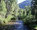 Wolf Creek (Mineral County, Colorado).JPG