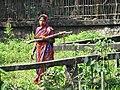 Woman Bearing Wood - Srimangal - Sylhet Division - Bangladesh (12904443484).jpg