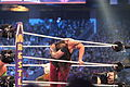 WrestleMania XXX IMG 4585 (13769017954).jpg