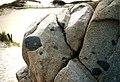 Xenoliths Herm.jpg