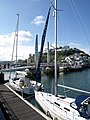Yachts in Torquay Harbour - geograph.org.uk - 822713.jpg