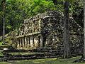 Yaxchilan, Chiapas 2.JPG