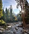 Yosemite Creek - Flickr - Joe Parks.jpg