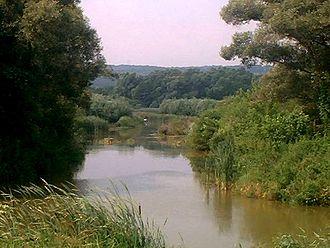 Zala (river) - Image: Zala rzeka