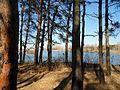 Zolotonis'kyi district, Cherkas'ka oblast, Ukraine - panoramio (32).jpg