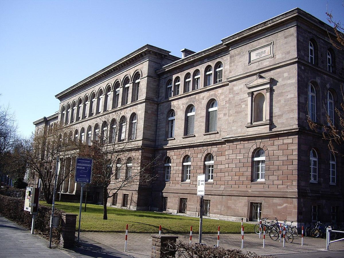 Göttingen Museen