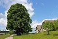 Zwei Linden bei Oberrosenauerwaldhäuser 02 2015-05 NDM ZT-168.jpg