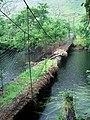 """""""Dangerous Bridge - Do Not Cross"""" - geograph.org.uk - 968647.jpg"""