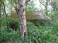 's-Graveland Vreelandseweg M13N.JPG